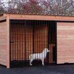 Chenil Forz noir avec niche pour chien isolée en bois de Douglas