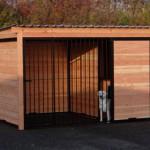 Chenil pour chien FORZ noir avec cadre en bois de Douglas