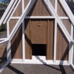 Ouverture du nichoir jusqu'à l'enclos du poulailler Pip