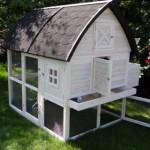 Poulailler avec jardin