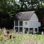 Poulailler pour le jardin