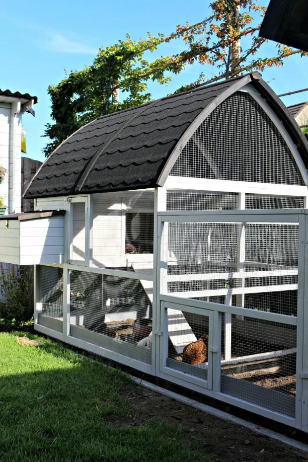 poulailler cath drale luxe xxl avec enclos. Black Bedroom Furniture Sets. Home Design Ideas