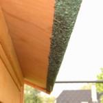 Grand clapier avec toit bitumé