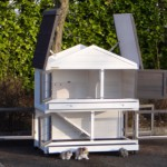 Clapier avec toit en charnières