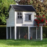 Poulailler Sunshine avec jardin