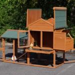 Poulailler pour votre jardin
